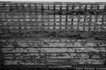 Water Oil Wood fine art black and white photography