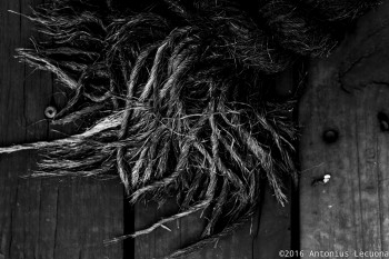 Rope grunge black white photography abstract still life